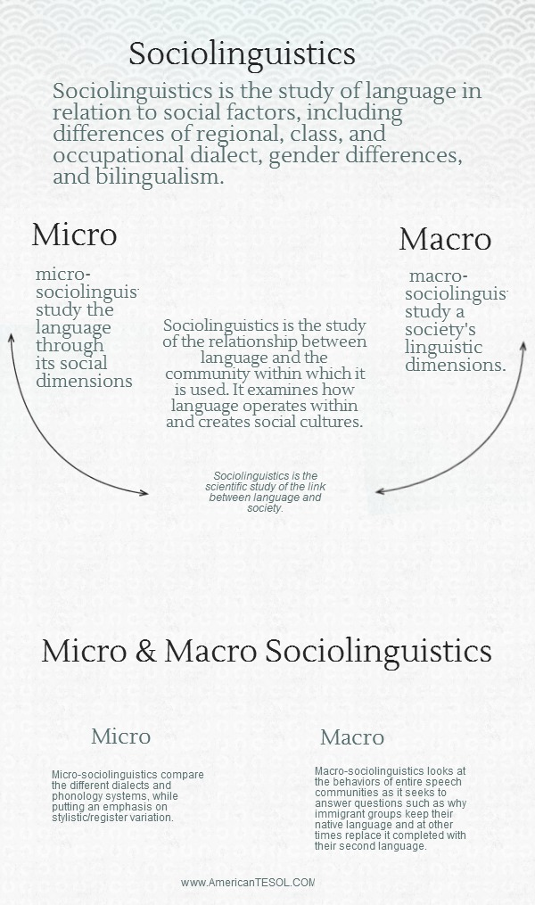 transceding sociolinguistics language caste and power essay Sociolinguistics essay it is the social differentiation in terms of power  transceding sociolinguistics: language, caste and power.