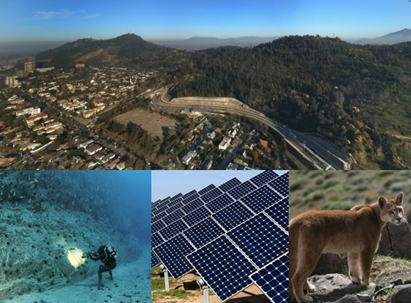 Teach Abroad in Santiago, Chili, Spotlight on the Environment, Parque Metropolitano