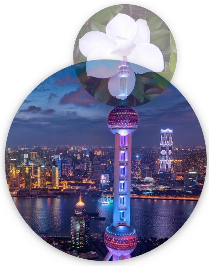 Teach Abroad in Shanghai China