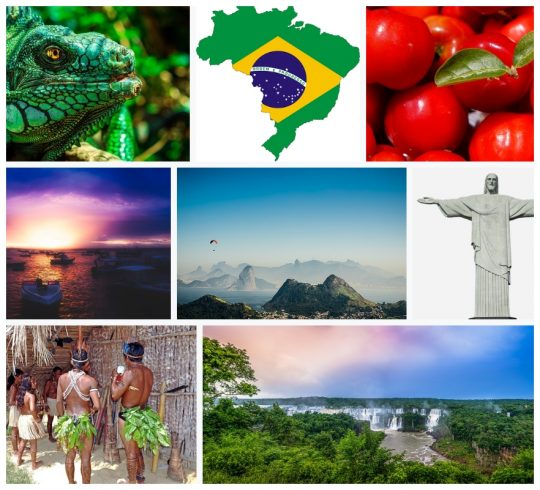 Brazil is Paradise, Go Ahead and Teach English Abroad