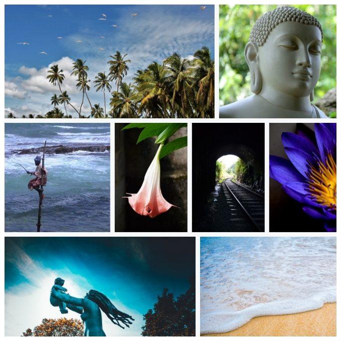 Go Ahead and Teach in Sri Lanka